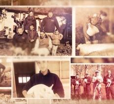 Agricoltura e allevamento: quando essere Cooperativa fa la differenza